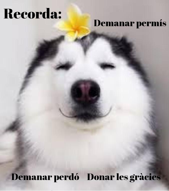 Recorda_
